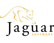 Jaguar Software Logo