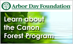 Learn About The Canon Forrest Program