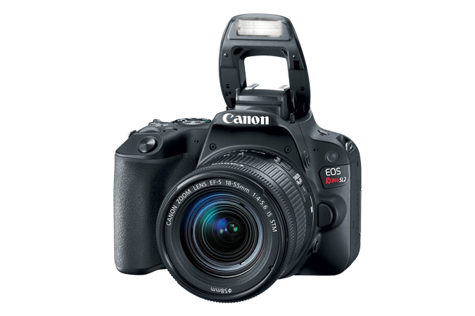 EOS Rebel SL2 with Flash