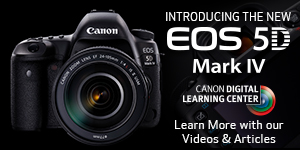 Introducing the NEW EOS 5D Mark IV. Learn More with our Videos and Articles.